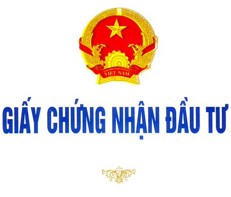 xin-cac-loai-giay-phep